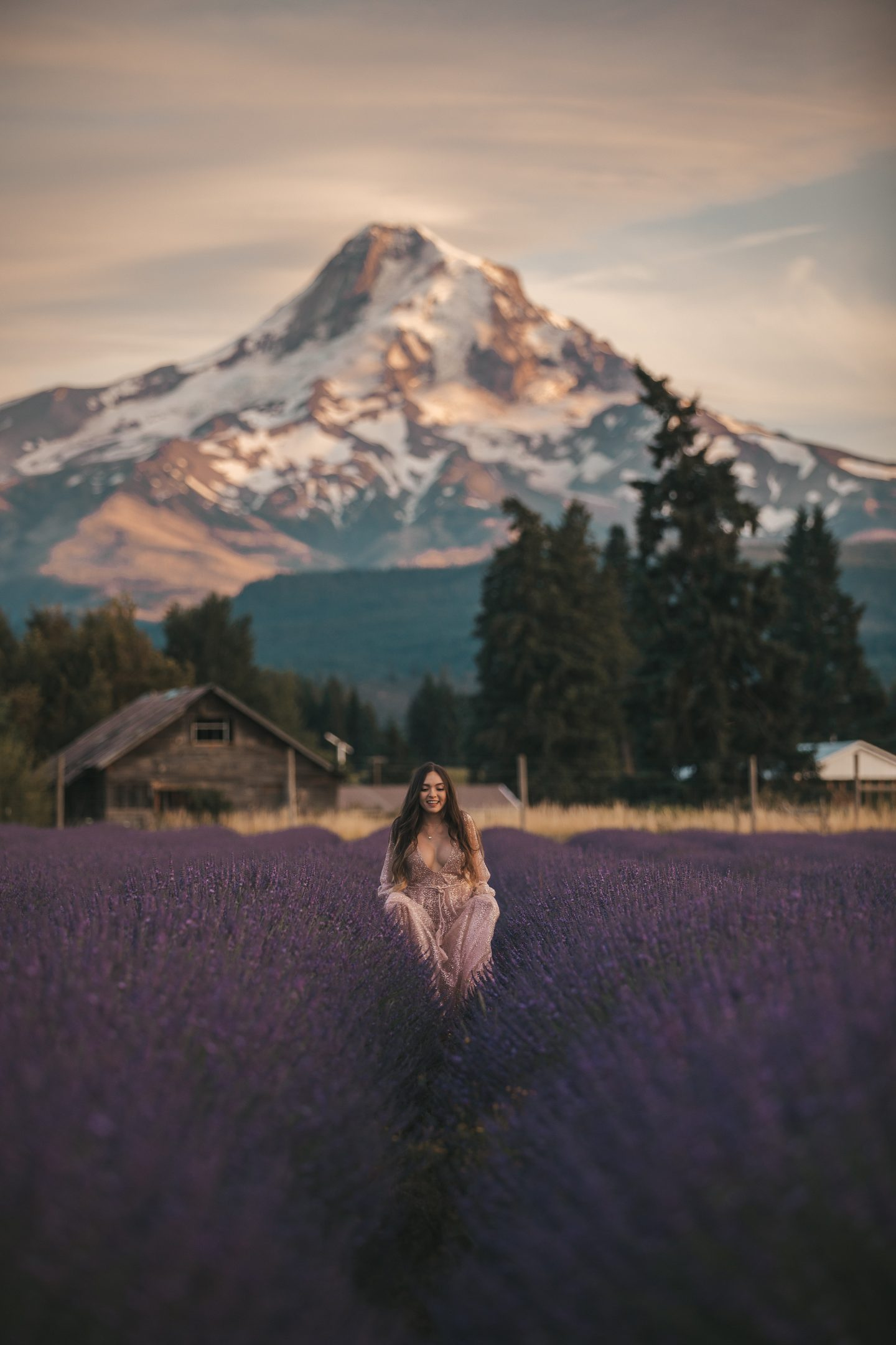 Prettiest Lavender Field in Oregon