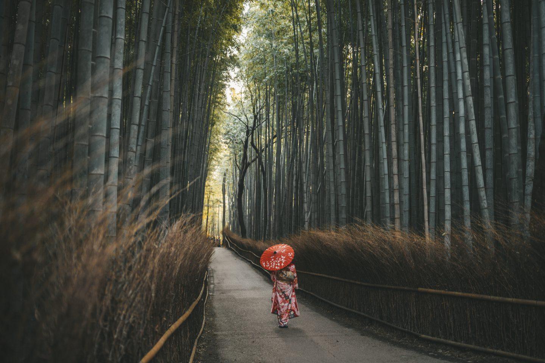 arashiyama bamboo forest kimono