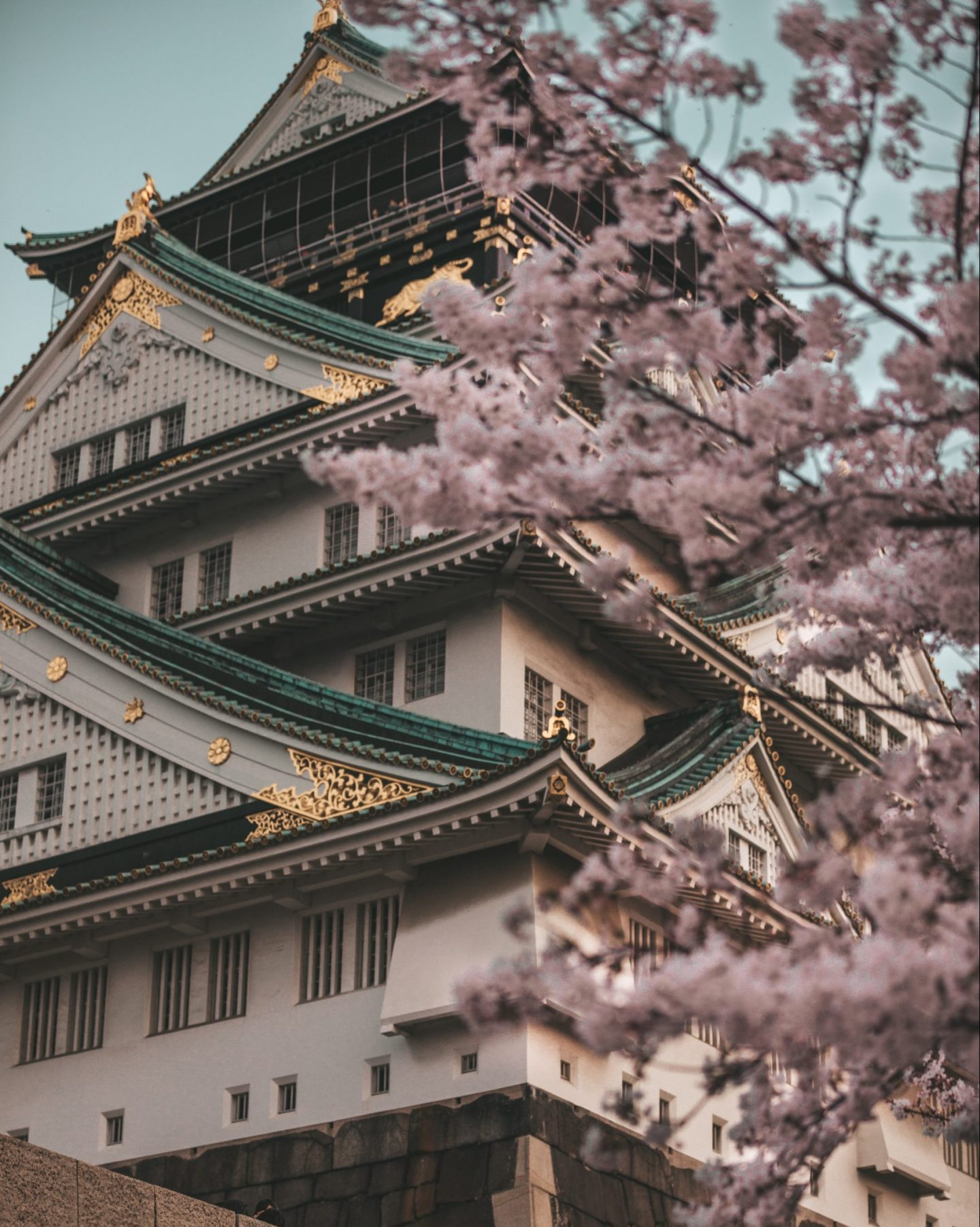 osaka castle during cherry blossom season