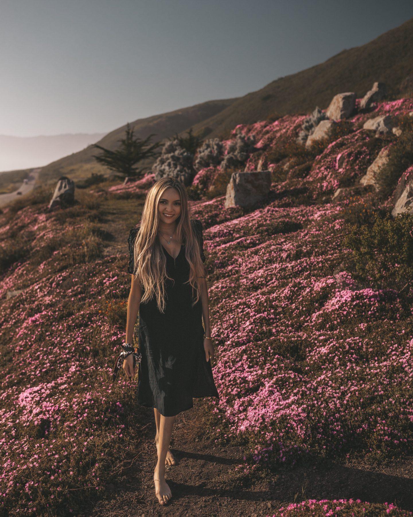 pink flowers big sur